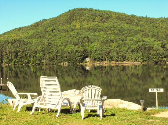 Loch Lyme Lodge: Sitting by the lake
