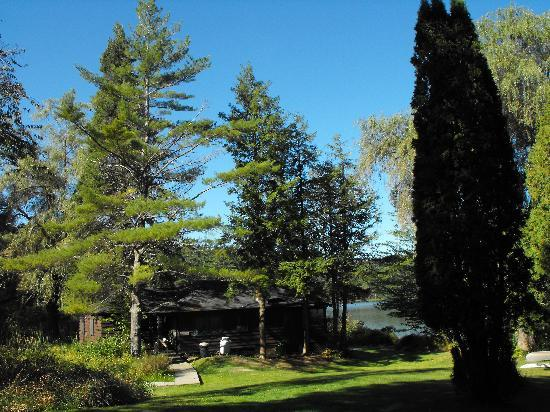 Loch Lyme Lodge: Cabins