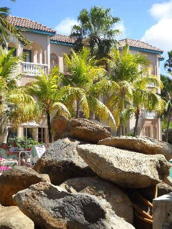 Caribbean Palm Village Resort : the resort