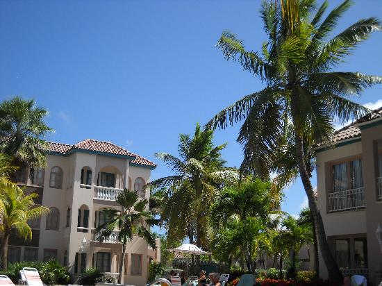 Caribbean Palm Village Resort : beautiful landscaping