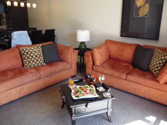 Clear Ridge Apartments: Great lounge suites