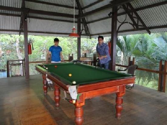Hotel Treetop: Pool table