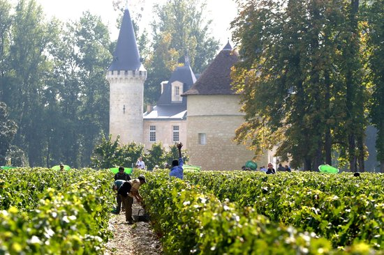 Bordeaux, Prancis: We are particularly specialized in trips related to wine tourism and Cognacs.