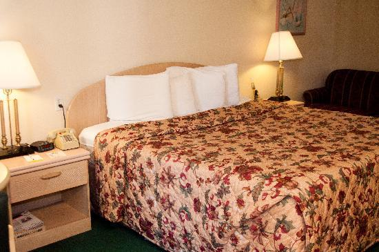 Rodeway Inn: King Bed Room