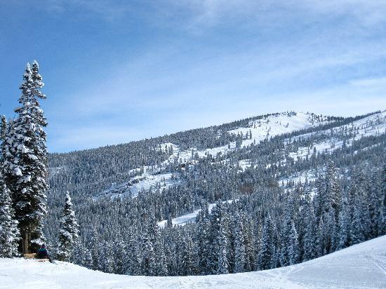 Snowmass Village Hiking Trails: Snowmas1