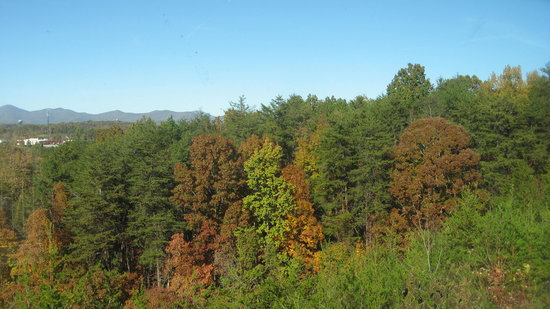 Days Inn Dahlonega: view from all of our guest bedrooms