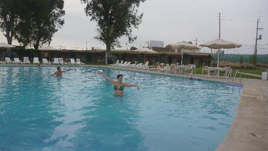 Casa Andina Classic - Chincha Sausal: piscina del hotel