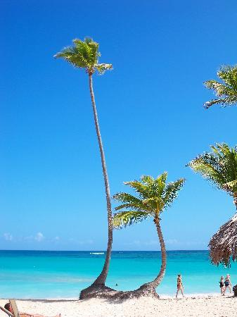 Iberostar Grand Hotel Bavaro : View from the beach