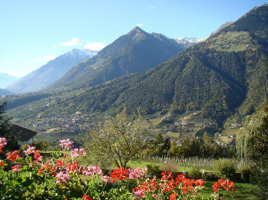 Scena, Italia: Ausblick