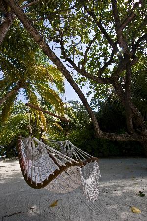 Cocoa Island by COMO: Hammock by the spa