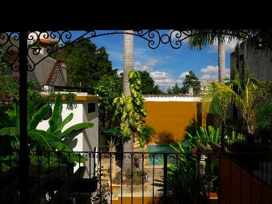 Luz En Yucatan: Terrace view