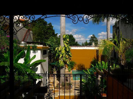 Luz En Yucatan照片