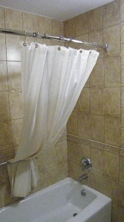Regency Inn & Suites: shower area nice touch with the curtain tucked up actually