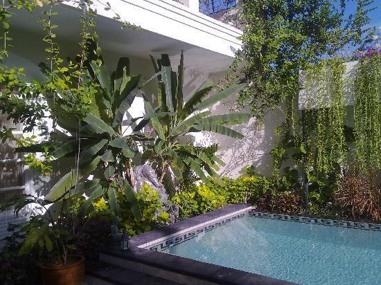 Casa Artista Bali: Gorgeous pool in lovely garden