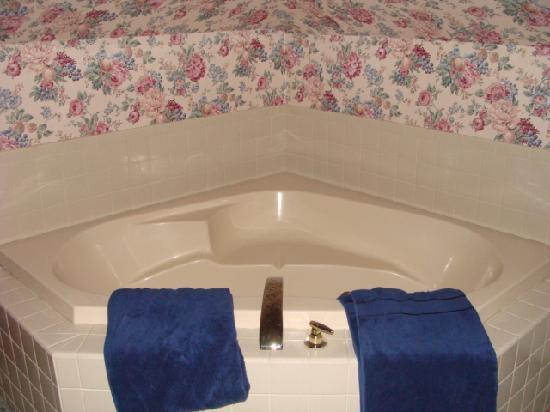 Carriage House Inn Bed and Breakfast: Spacious tub right next to the bed, seperate bath with shower as well