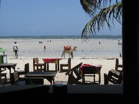 PrideInn Express Nyali : Nearby Pirates Beach