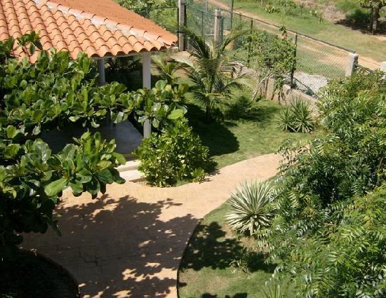 Posada Casa Las Trinitarias: vista desde el balcon
