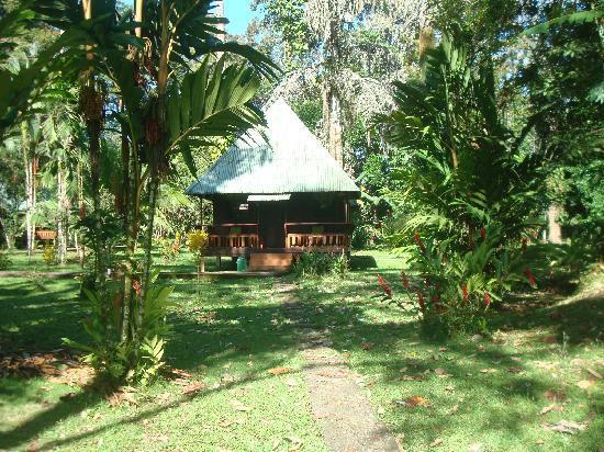 Hotel El Pizote Lodge: Nuestra rústica cabaña