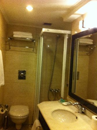 Cartoon Hotel: Bathroom