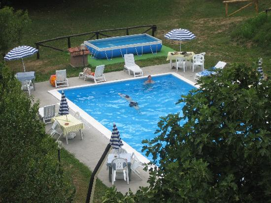 Agriturismo La Palazzina: the swimming pool