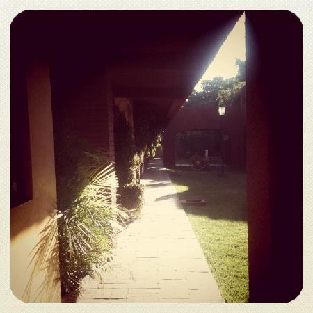 Hacienda La Noria: garden
