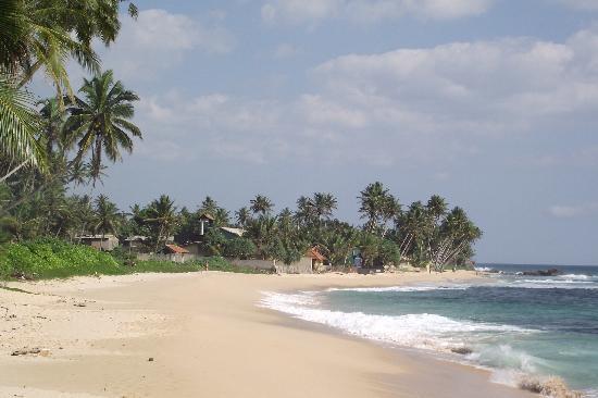 Amor Villa : Beach