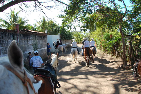 Painted Pony Horse Tours: Heading the volcano