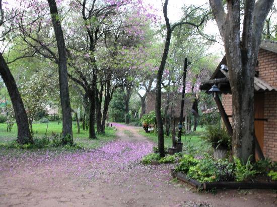 San Bernardino, Paraguay: Entrada en Primavera