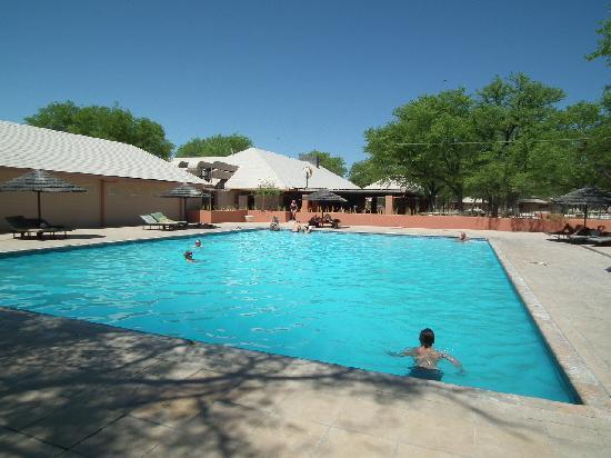 Halali Resort: Pool