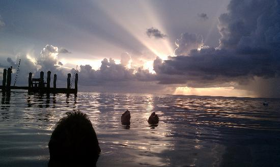 Sunset Boat Tour Islamorada
