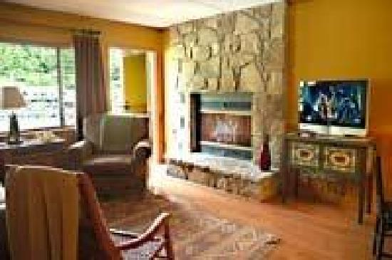 Mountain Village Inn Condominiums: Fireplaces available