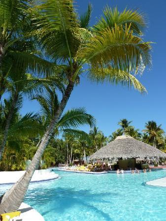 La piscine lagon avec le bar photo de catalonia bavaro - Piscine ubbink lagon ...