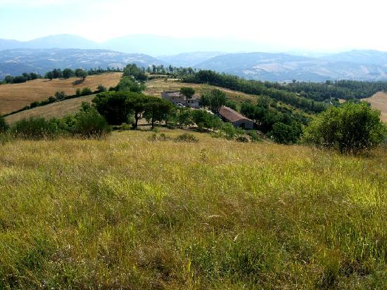 Villa Pian Di Cascina: private villa set in 20 acres of untouched farmland near Perugia