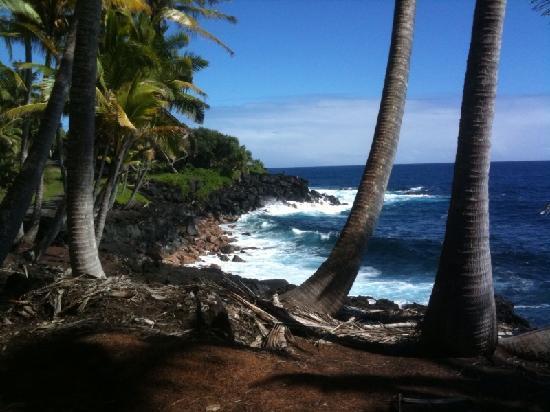 Kalani : How about inspiring shoreline walk?