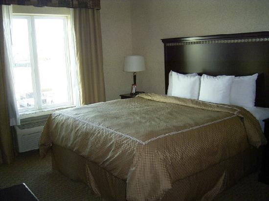 Bed picture of comfort suites central corpus christi for Comfort inn bedding