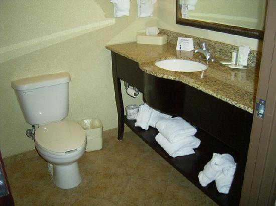Comfort Suites Central: Bathroom