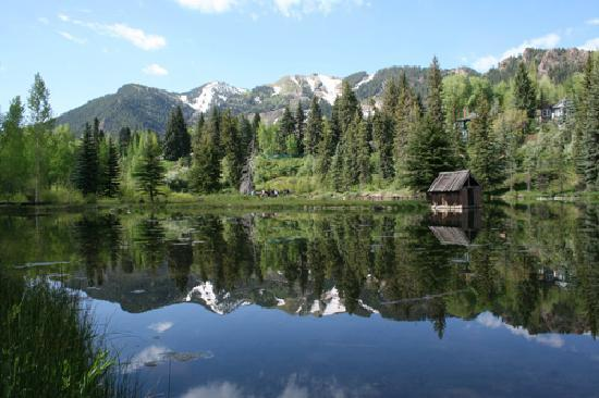 Aspen Center for Environmental Studies: Hallam Lake- Spring