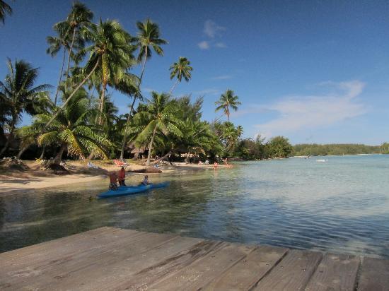 Hotel Les Tipaniers : Blick zum Strand