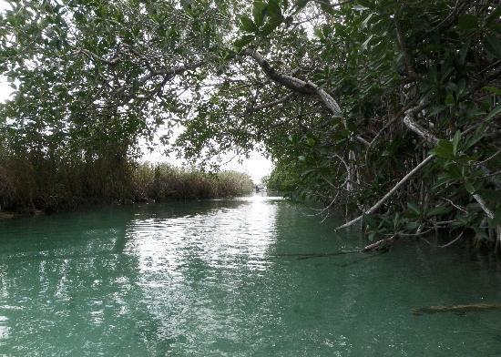 Visit Sian Ka'an: The canal