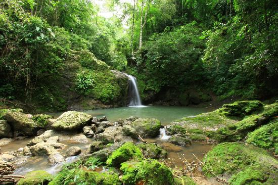Nature Specialist Tours: El Salto Waterfall