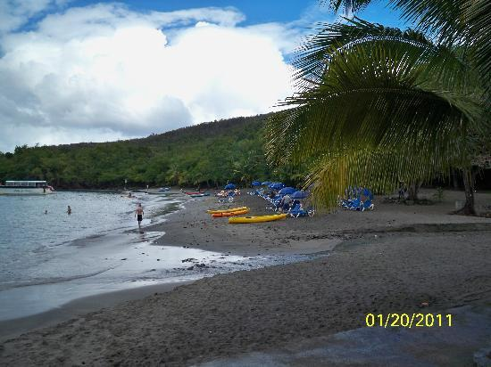 Island Divers: The beach
