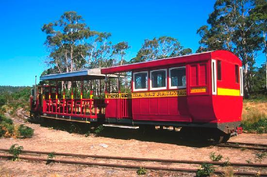 Ida Bay Railway: The Train