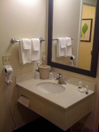 Fairfield Inn & Suites Albany East Greenbush: Vanity area separate from toilet (usually)