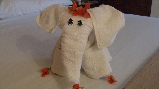 Posada Luna del Sur: Cute towel
