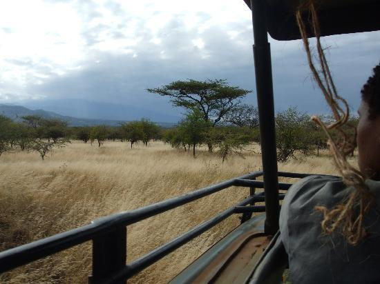 Moshi, Tanzania: on safari at Lake Chala