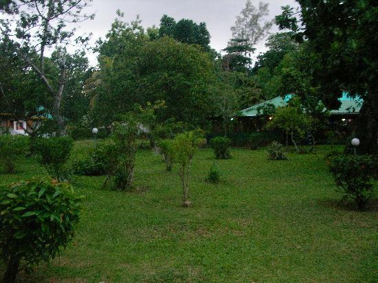 Tournesol Guesthouse: il giardino davanti casa