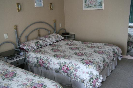 Ashleigh Court Motel: Zimmeransicht