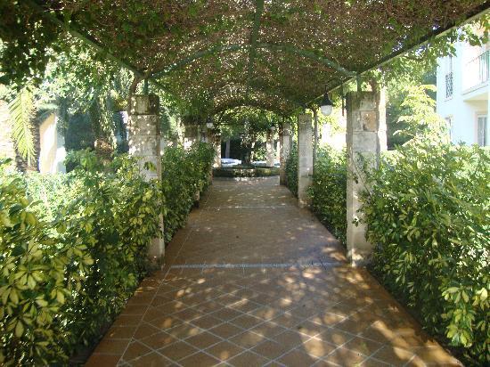 Zafiro Tropic: Jardines