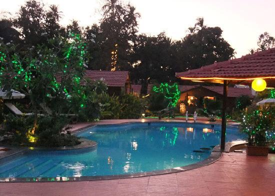 The Fern Gardenia Resort : Lights at dusk