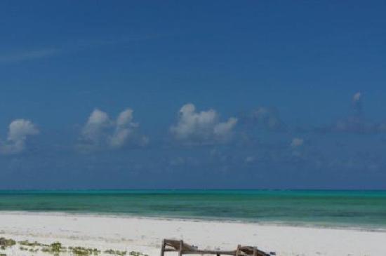 Hakuna Majiwe Beach Lodge: silenzio sole sabbia